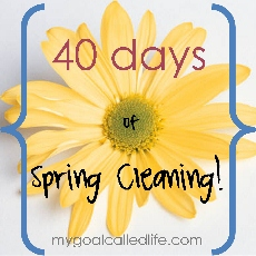 40 Days of Spring Cleaning
